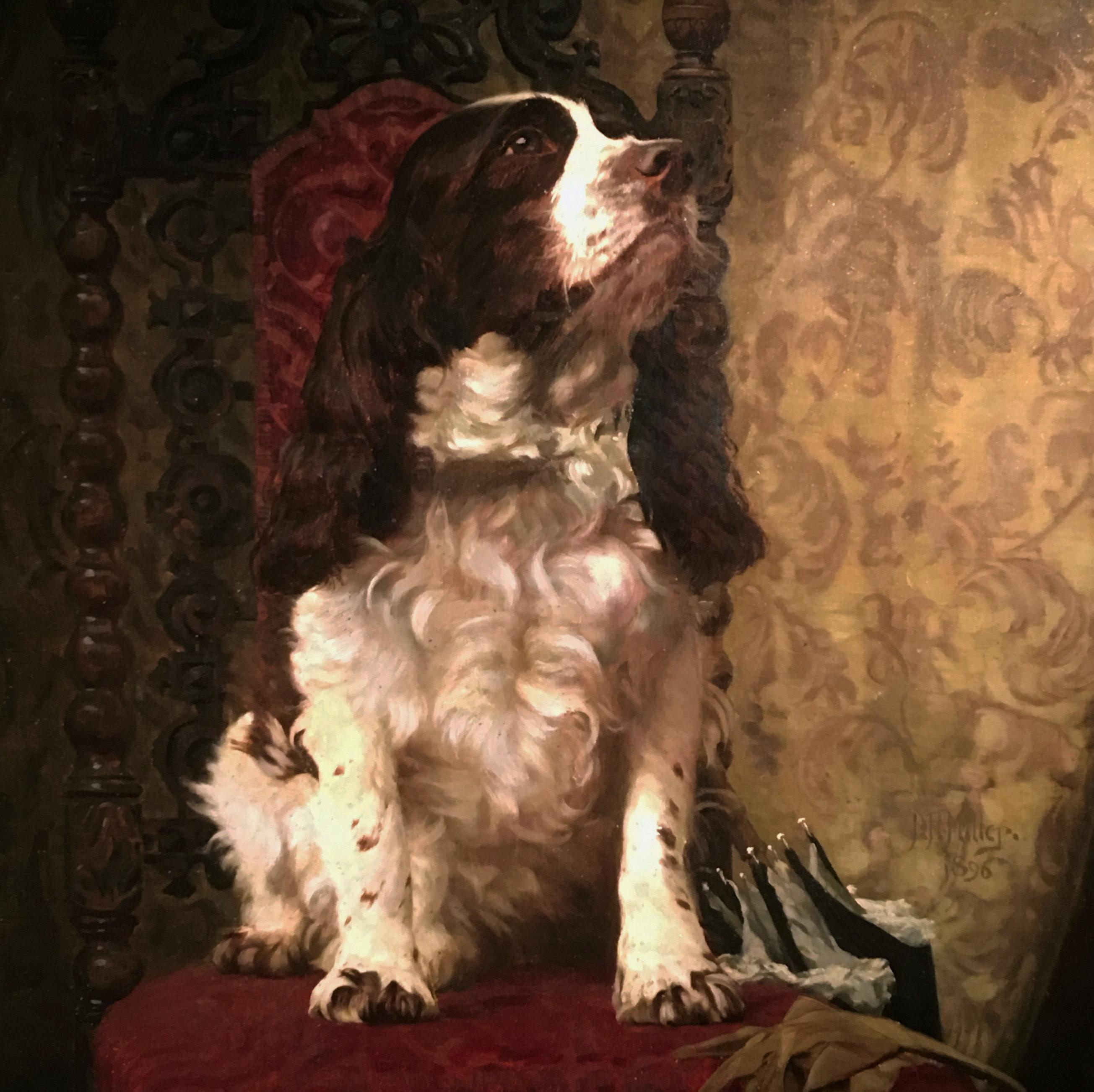 portrait of a spaniel hunting dog19th