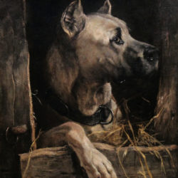Portrait Great Dane hunting dog ,oil on canvas