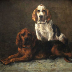 Hunting dogs Belgian school 19th