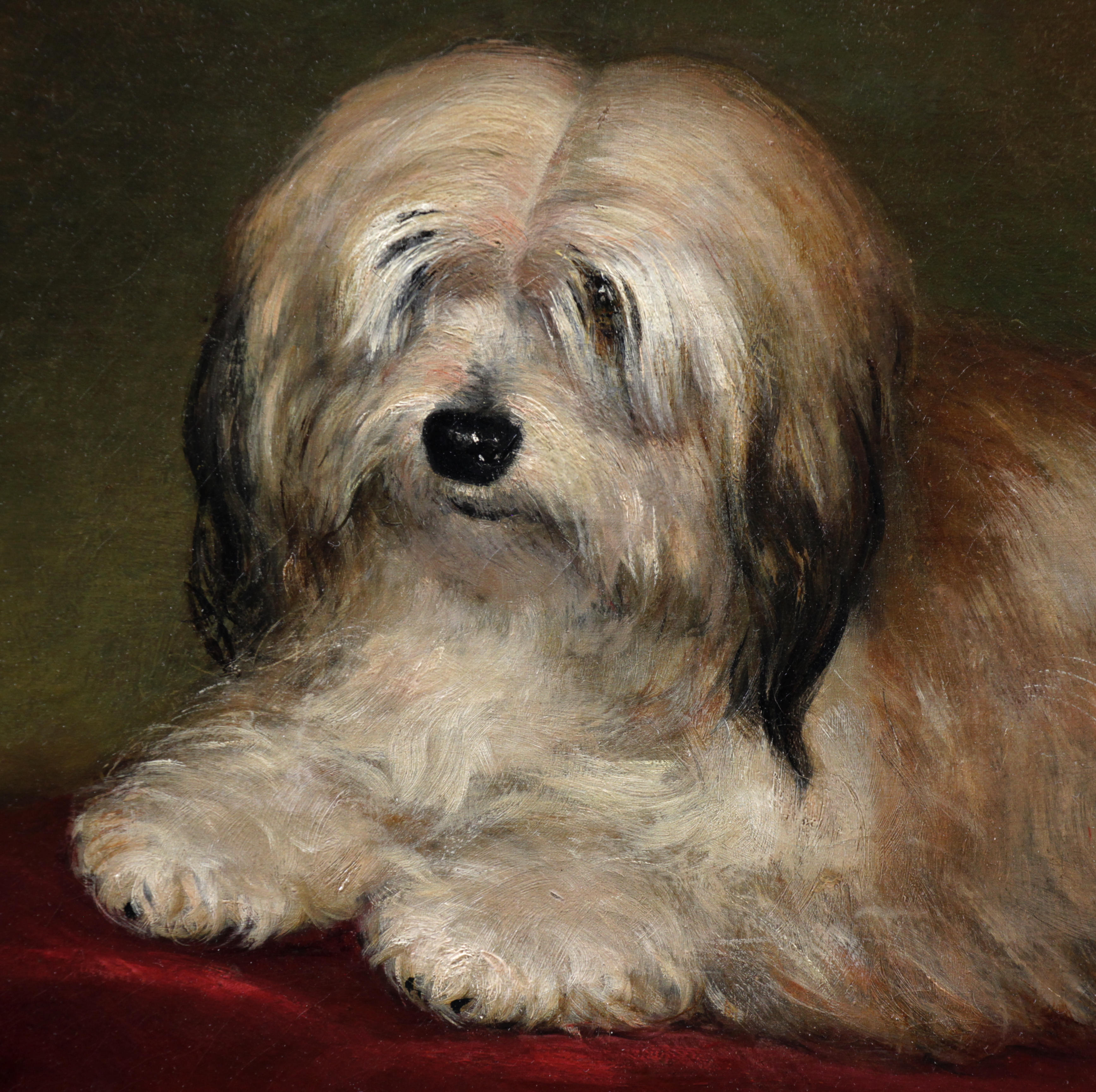 Very nice portrait of a dog 19th
