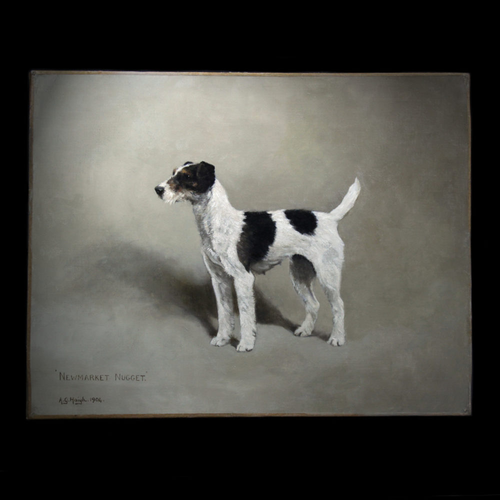 Exclusive painting Wire Fox Terrier