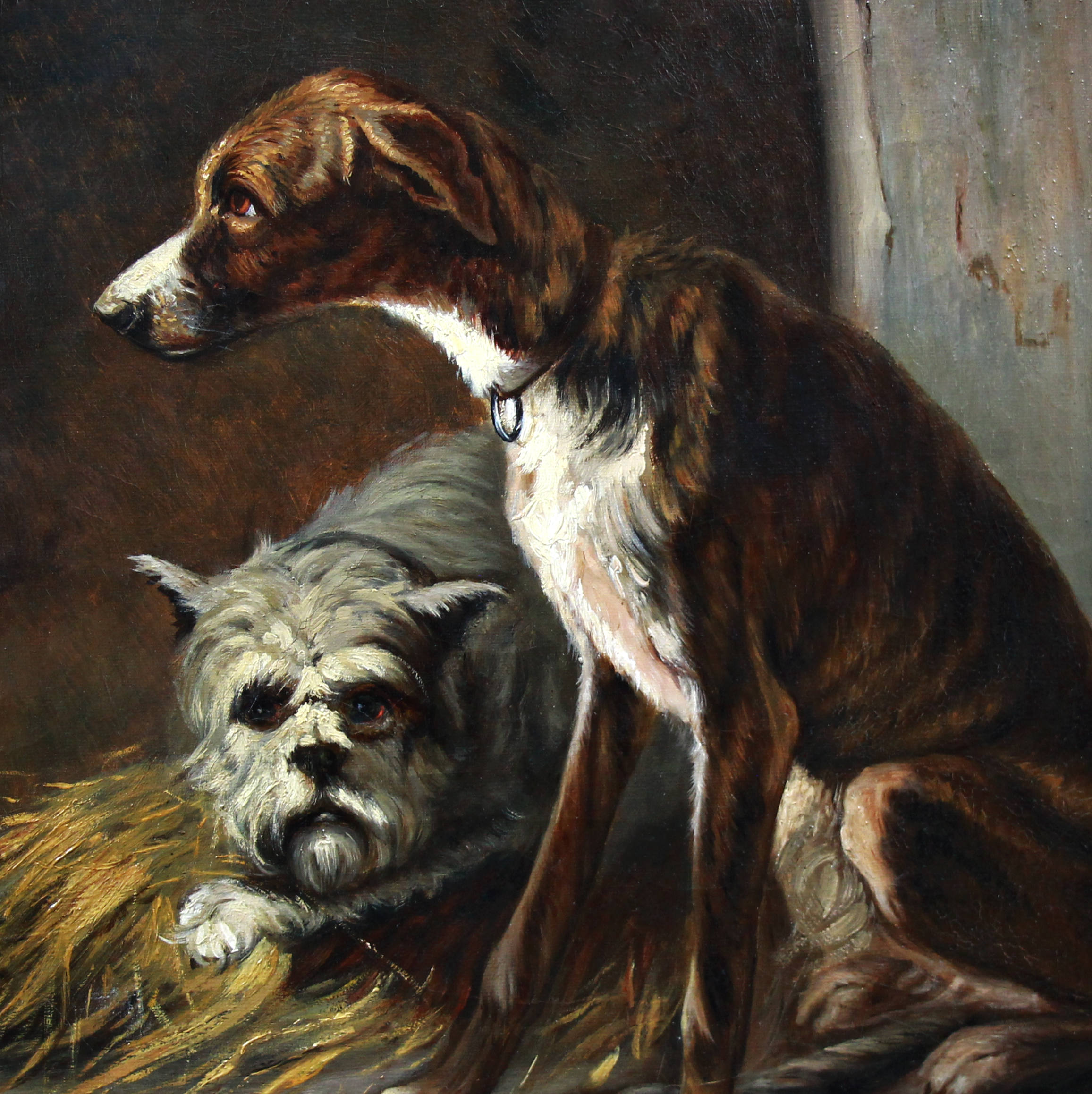 two hunting dogs in a kennel