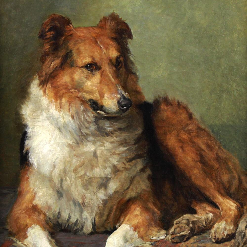 portrait-of-a-collie-dog-2-website-monartsgallery.jpg